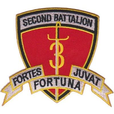 2nd Bn 3rd Marines Patch