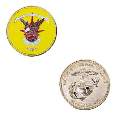 MCAS Cherry Point Support and Training Coin